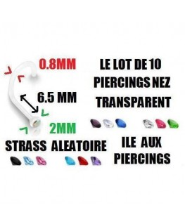 LOT 10 Piercing nez transparent bio flexible strass fin
