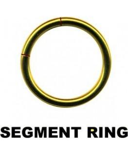 piercing d anneau a segment cercle boucle couleur doré