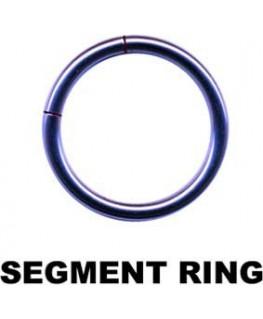 piercing anneau a segment acier couleur vioelt